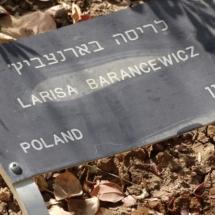 Izrael 2015 238